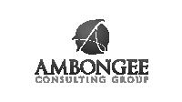 AmbogneeGS 1